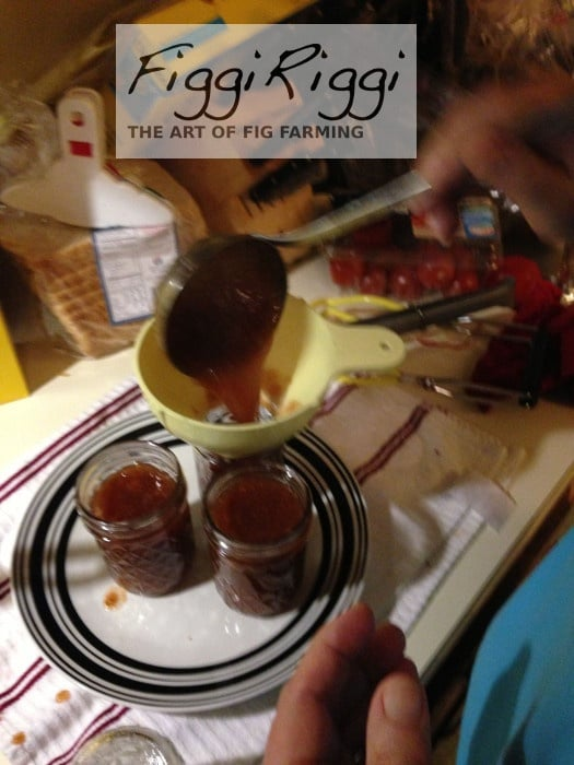 Filling the fresh fig preserves pulp into the jars