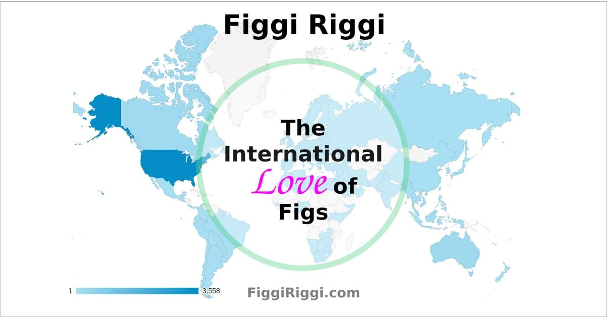 international love of figs image capture of a world map